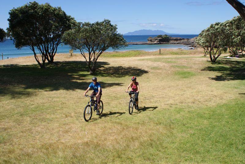 Matakana Bicycle Hire